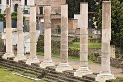 rome Rad av kolonner på det romerska forumet Kolonnerna är synliga arkivfoton