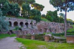 форум Италия римский rome Форум Romanum или большая винная бутылка форума стоковое изображение