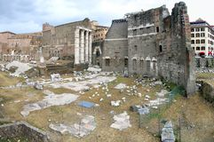 Rome ruins. Ruins of ancient Rome at Forum Romanum royalty free stock image