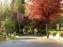 Rome - une vue de Verano Image stock
