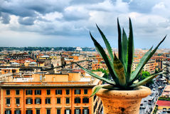 Rome view Royalty Free Stock Photos