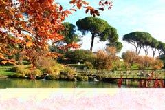 Rome, Villa Doria Pamphili Stock Photography