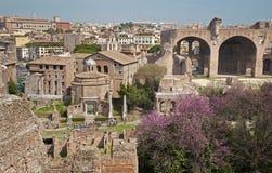 Rome - vooruitzichten van heuvel Palatne aan Forum Romanum Royalty-vrije Stock Fotografie