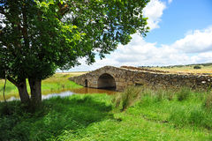 Romersk bro på vägen till Santiago, via de la Plata, Spanien Royaltyfria Foton