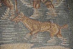 Romersk golvmosaik Arkivfoto