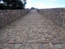 Romersk väg i Cagas de OnÃs royaltyfria bilder