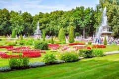 Romerska springbrunnar i Peterhof lågt parkerar, St Petersburg, Ryssland royaltyfria bilder