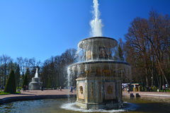 Romerska springbrunnar i Peterhof, St Petersburg, Ryssland Arkivbilder
