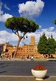 ROMERSKT FORUM, ROME, ITALY-SEPTEMBER 24 Arkivbild