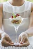 Romig dessert Royalty-vrije Stock Afbeelding