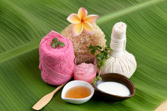 Romig Vers Herb Mask met verse melk, Ivy Gourd en honing, kuuroord met natuurlijke ingrediënten van Thailand Royalty-vrije Stock Fotografie