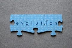 Rompecabezas de la evolución hecho juego fotos de archivo libres de regalías