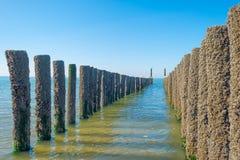 Rompeolas al mar en verano Fotos de archivo libres de regalías