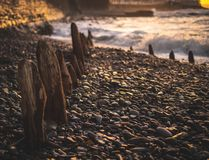Rompeolas de la madera enterrado en guijarros en una playa británica foto de archivo libre de regalías