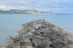 Rompeolas de Lyme Regis en verano imagen de archivo