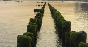 Rompeolas de madera en el mar fotos de archivo libres de regalías