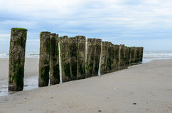 Rompeolas de madera en la playa en Nieuw Haamstede Zelanda Fotos de archivo libres de regalías
