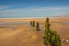 Rompeolas resistidos en la playa arenosa Imagenes de archivo