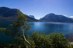 Romsdalsfjorden около Andalsnes в южной Норвегии Стоковые Фотографии RF