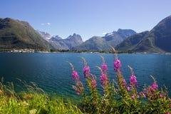 Romsdalsfjorden cerca de Andalsnes en Noruega del sur Fotos de archivo