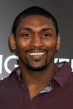 Ron Artest Royalty Free Stock Image