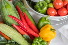 Ron`s vegetable town in Thailand is colorful. Health benefits through planting at the cage royalty free stock images
