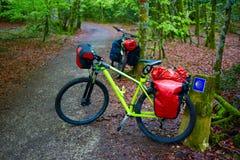 Roncesvalles buk zaczyna sposób Sain James rower Zdjęcie Stock