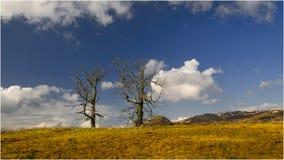 Rond Blanefield - Schotland Stock Afbeelding
