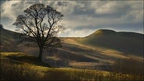 Rond Blanefield - Schotland Royalty-vrije Stock Foto's