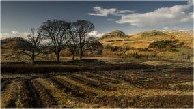 Rond Blanefield - Schotland Royalty-vrije Stock Fotografie