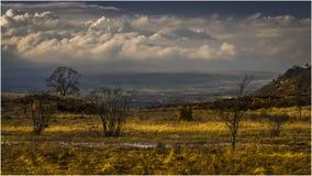 Rond Blanefield - Schotland Stock Foto's