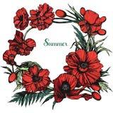 Rond bloemendiekader met papavers wordt gemaakt Royalty-vrije Stock Afbeelding