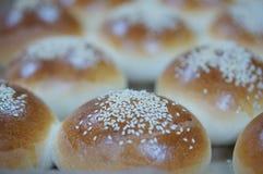 Rond brood van sandwichbroodje met sesam royalty-vrije stock foto's