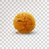 Rond bruin die koekje met crumbs op transparante achtergrond wordt geïsoleerd Realistische vectorillustratie stock illustratie