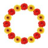 Rond frame van natte bloemen Royalty-vrije Stock Afbeeldingen