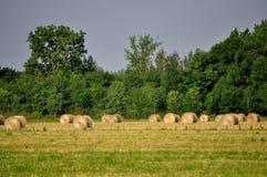 Rond Hay Bales stock afbeeldingen