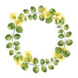 Rond kader van bladeren en gele bloemen stock illustratie