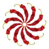 Rond kader van Spaanse peperpeper op witte achtergrond Royalty-vrije Stock Foto