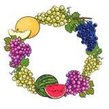 Rond kader van witte, groene, purpere druiven, meloen en watermeloen Royalty-vrije Stock Foto
