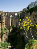 RONDA, ANDALUCIA/SPAIN - MAY 8 : View of the New Bridge in Ronda Royalty Free Stock Images