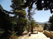 Ronda Countryside, Andalusia Fotografia Stock Libera da Diritti