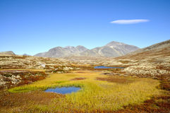 Rondane Royalty Free Stock Photos