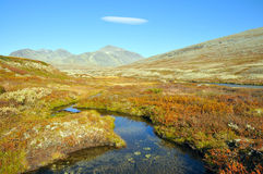 Rondane Royalty Free Stock Photo