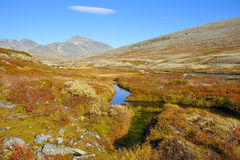 Rondane Stock Photography