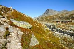 Rondane Stock Photos