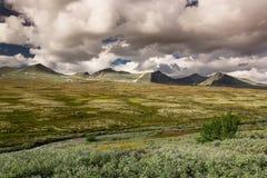 Rondane nationaal park met bergen stock foto