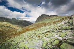 Rondane nationaal park met bergen royalty-vrije stock fotografie