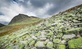 Rondane nationaal park met bergen stock foto's