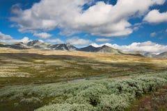 Rondane nationaal park met bergen royalty-vrije stock foto