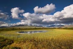 Rondane nationaal park met bergen en moeras royalty-vrije stock foto's